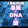 【人類補完計画】易経とDNAの謎