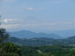 hiratukafujimi 2015 (4)