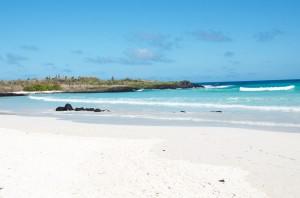 Playa de Tortuga