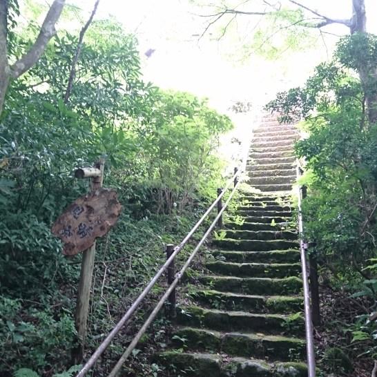1247見晴し茶屋さんが階段を登るとありますが、今回はパスしました。