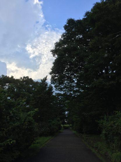 1645天気持つかなぁ( ・´ー・`)
