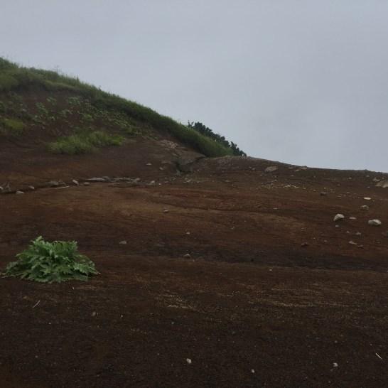 不思議な気分になる山頂付近でした。