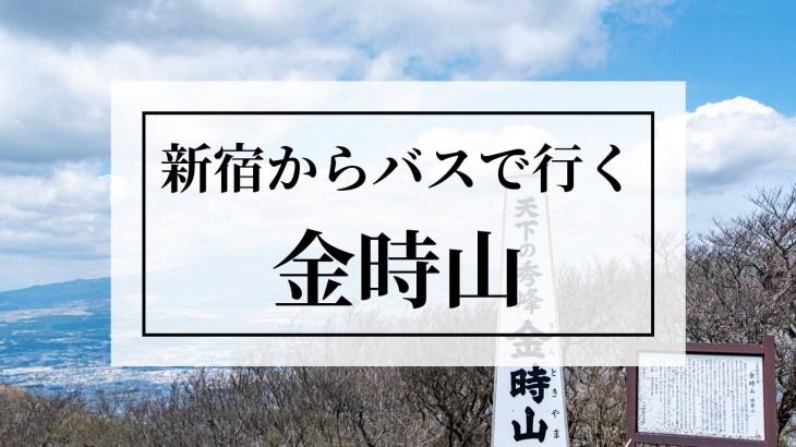【登山】新宿からバスで行く金時山