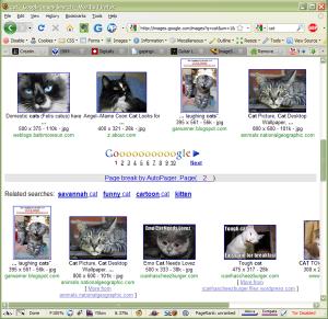 AutoPager screenshot (click for a bigger version)