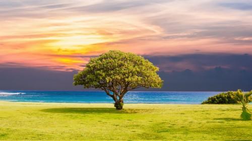 fond d ecran 4k paysage naturel ciel la