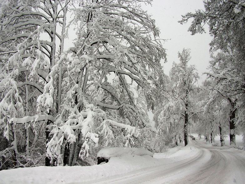 A LOT of snow!, Ceske Budejovice
