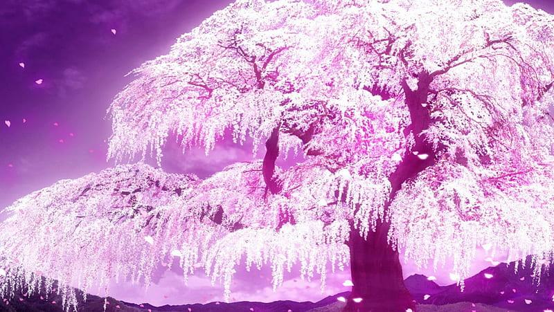 Anime Cherry Blossom