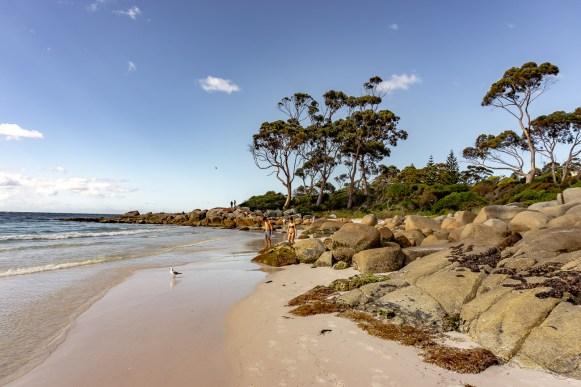 Tasmania Australia co zobaczyć
