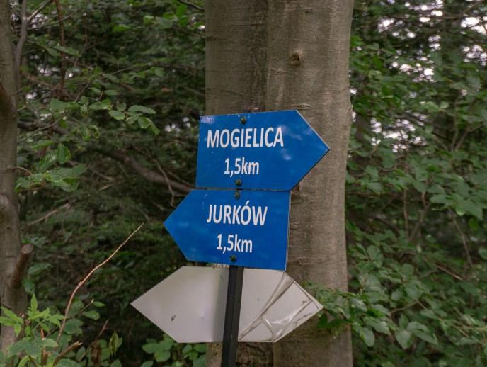 Mogielica szlak z Jurkowa