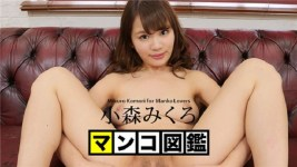 Jav Uncensored Miku Komori Pussy pictorial book Original videos