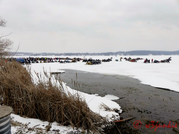 Polar Plunge at Bridgenorth