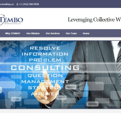 Tembo Consulting Inc