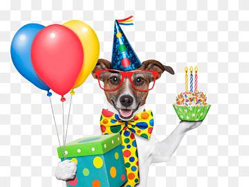 Birthday Dog Pet Dog Cake Balloon Png Pngwing