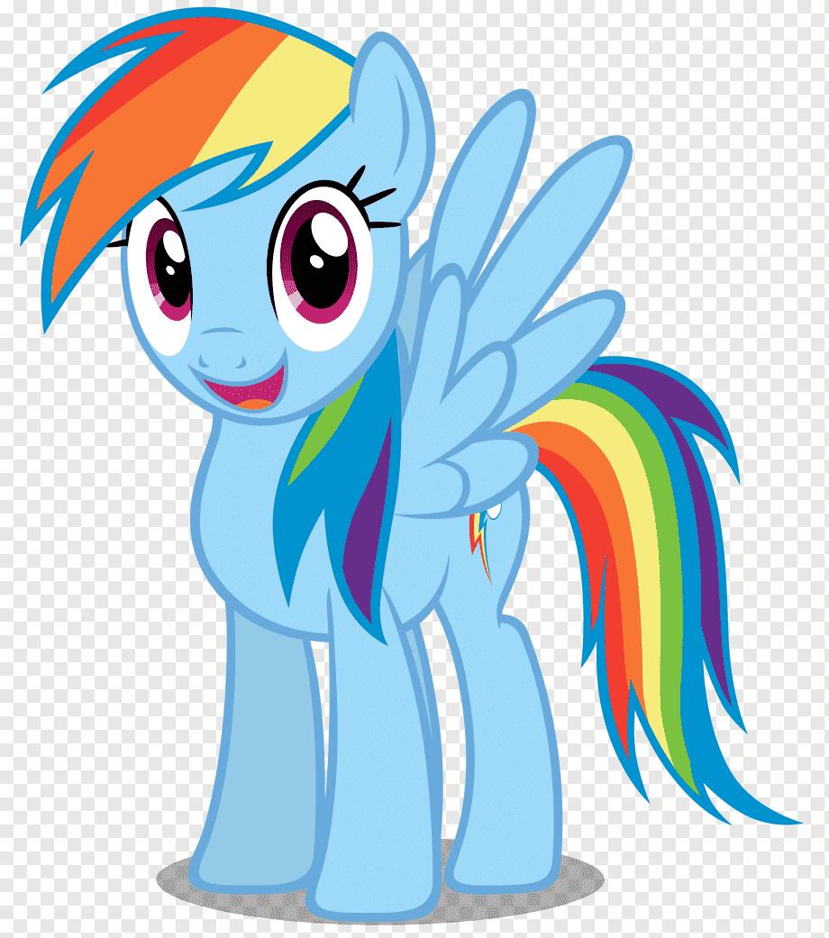 Rainbow Dash Twilight Sparkle My Little Pony Rainbow Dash S Mammal Vertebrate Equestria Png Pngwing