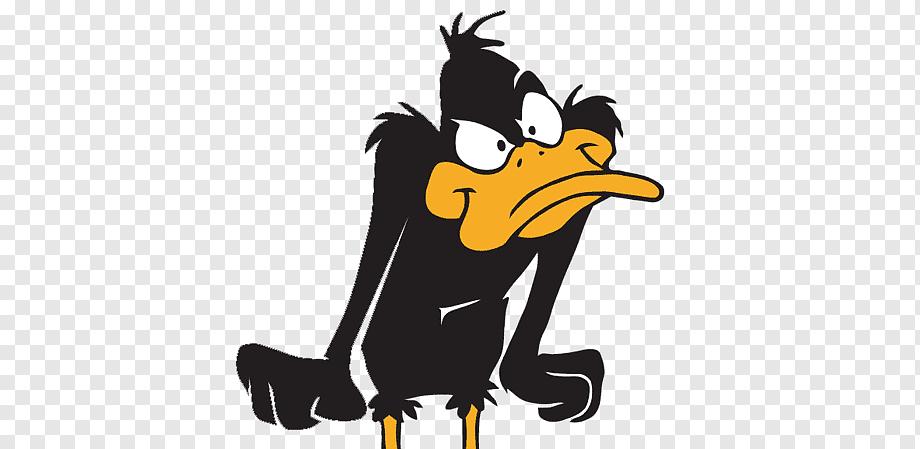 Hd Wallpaper Funny Meme Donald Duck Dolan Animals Ducks Hd Art