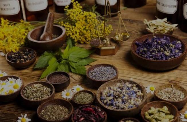 herbal medicine - Herbal practitioner harps on efficacy of herbs