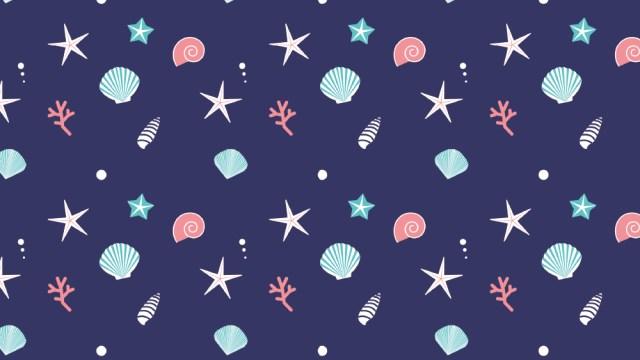 貝殻、ヒトデ、珊瑚…夏の波打ち際を連想させる包装紙