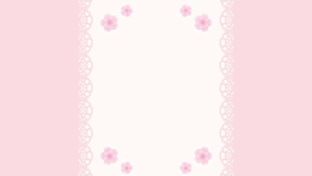 レースのあしらいと桜。新生活に彩りを。包装紙