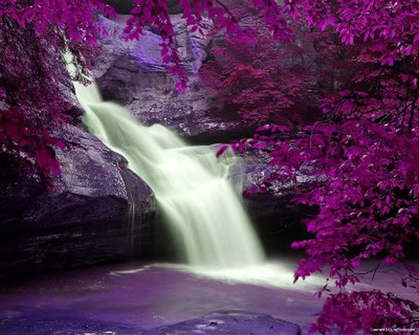 Image result for most beautiful waterfall