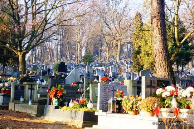 ポーランド 墓地