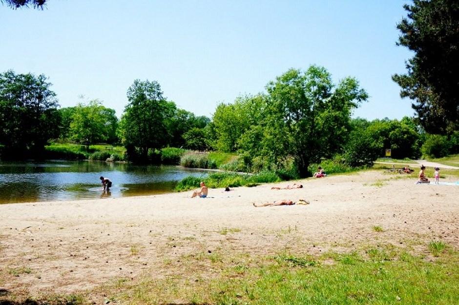 Piaseczno ピアセチュノ 公園