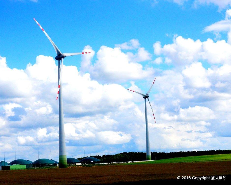 ポーランドには風車がたくさんあった。これは全然知らなかったからちょっとテンションが上った。