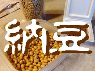 [雑記]大豆から納豆を手作りしたら派手に失敗した話