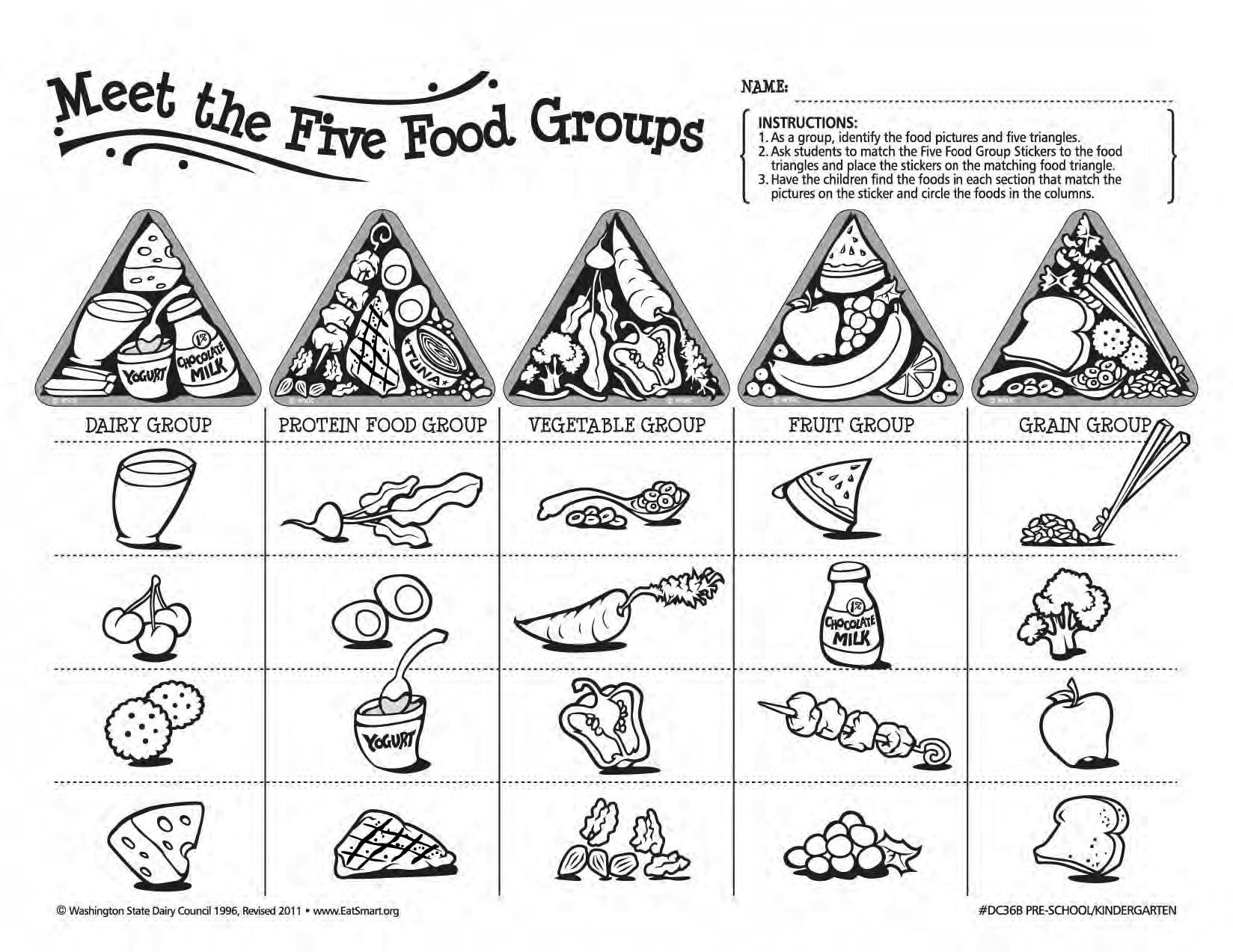Five Food Groups Workbook