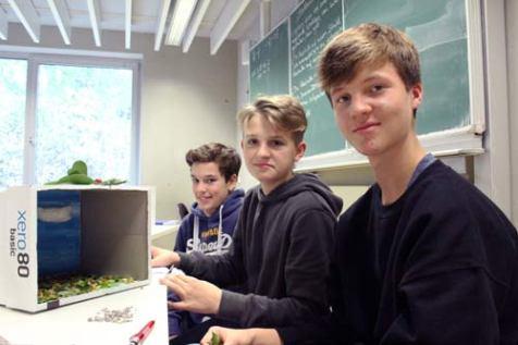 Jonas, Paul und Henri