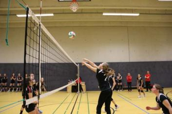Volleyball-Damen
