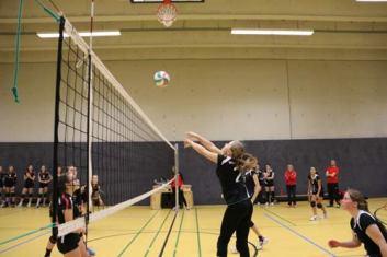 Volleyball-Damen