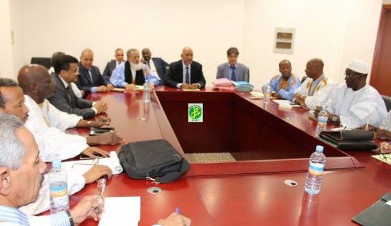 موريتانيا: ثمانية نواب جدد وانتخابات تشريعية منتصف السنة