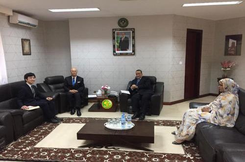 سفير ياباني جديد يسلم أوراق اعتماده لوزير الخارجية