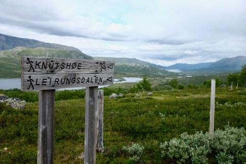 norwegeneins-11