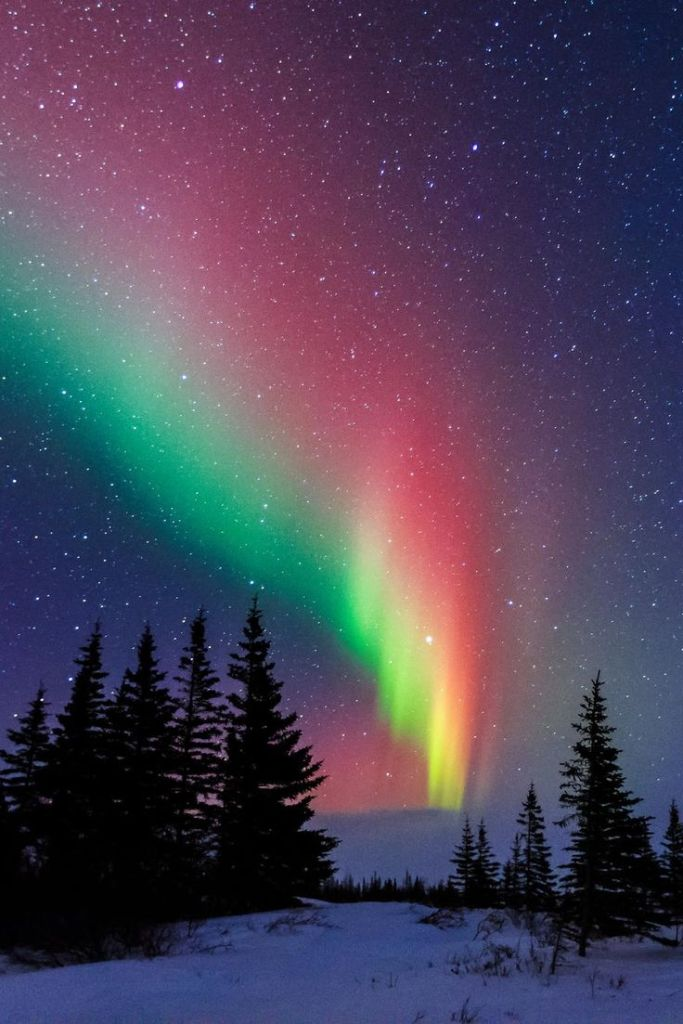 The Aurora Borealis blazes across the sky above Churchill, Manitoba.