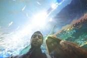 Lena and I at the Ripley's Aquarium Largest Aquarium in North America. Bar by waelben2000 under benandamen.com www.houseofbengal.com  Bollywood Grill & Cafe Bollywood Grill & Shisha