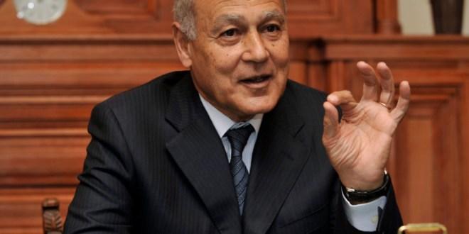 أبو الغيط ناقش مع كوبيتش الأوضاع اللبنانية.. هذا ما تمّ الاتفاق عليه!