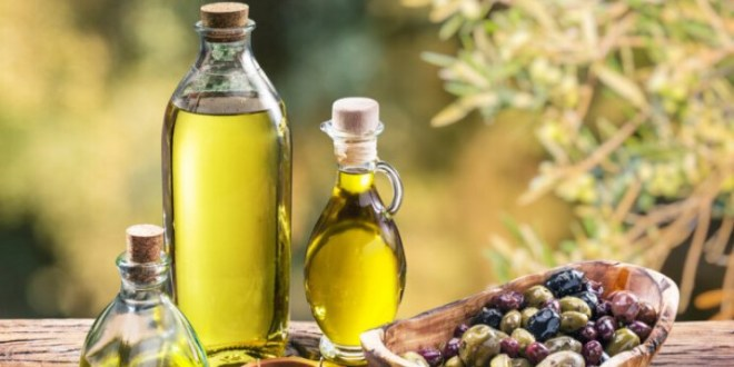 جودة زيت الزيتون اللبناني خطوة نحو تحقيق الأمن الغذائي