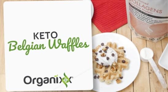 Keto Belgian Waffles   Organixx Recipe