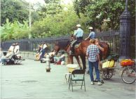 Horse Police in French Quarter