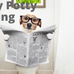 Puppy Potty Training Instructions Wag Train