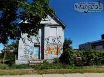 Street art (graffiti).