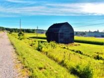 Farm. Copyright Robert Hartwig.