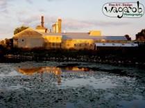 Une usine face à une mare.