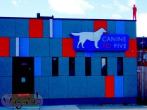 Canine to Five, Detroit, MI - Photography Copyright Robert Hartwig 2013