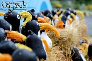 Halloween gourd Penguins at the Detroit Zoo - Copyright Robert Hartwig 2013, wagarob.wordpress.com