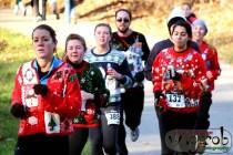 Hideous Holiday Sweater Run, Kensington Metropark, Milford, MI - Copyright Robert Hartwig 2013, wagarob.wordpress.com