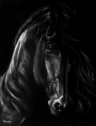 """FRIESIAN HORSE"" ; Size: B1 (100x70cm)"