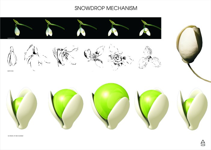 Mechanism of the snowdrop - presentation