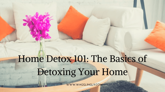 Home Detox 101: The Basics of Detoxing Your Home